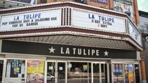 la-tulipe-732