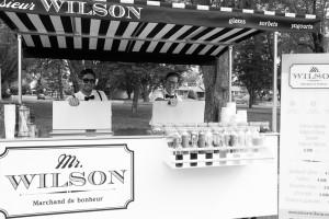 mr_wilson-39