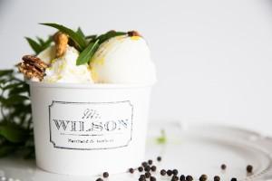 mr_wilson-7